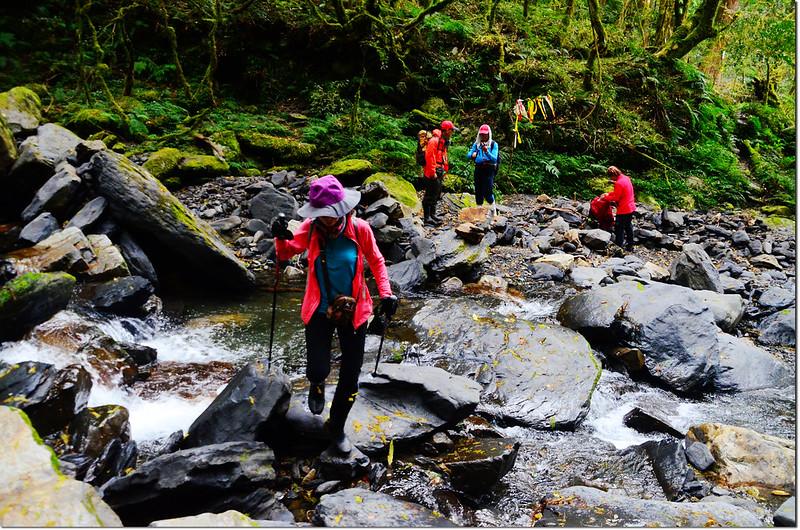 巨木群登山步道渡溪處