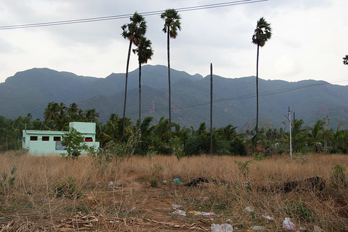 Fields used for open defecation; a TSC toilet stands abandoned in the background