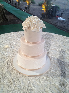 Wedding Cake with Damask | by Sweet Lauren Cakes