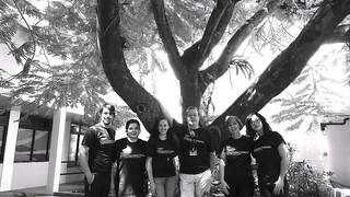 TEAM TEDXusagradocorazon