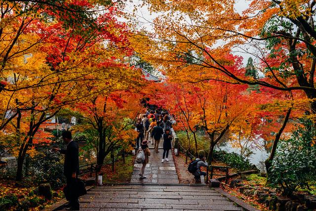 Kyoto_Eikando_09