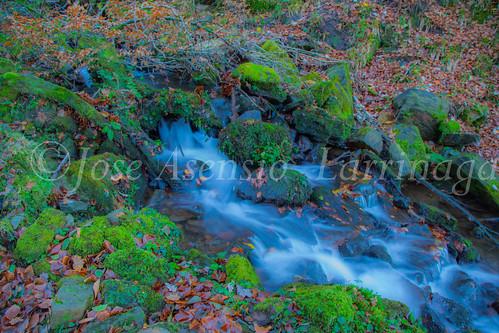 Parque Natural de Gorbeia #DePaseoConLarri #Flickr      -2825