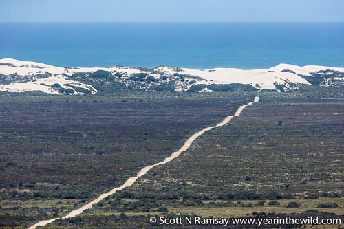 De Hoop Nature Reserve - South Africa | by scottnramsay