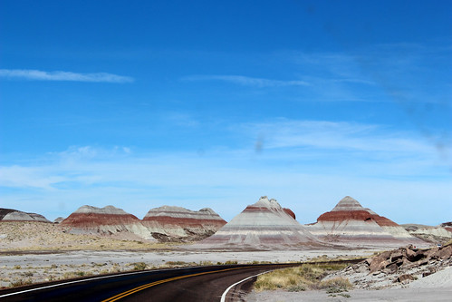PetrifiedForest-69