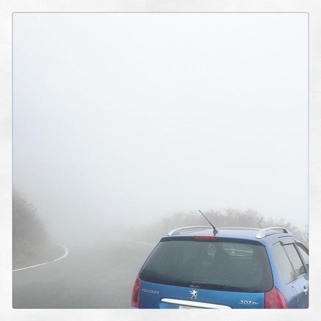 「雲の中に続く道」 #ufoライン #プジョー #プジョー307sw