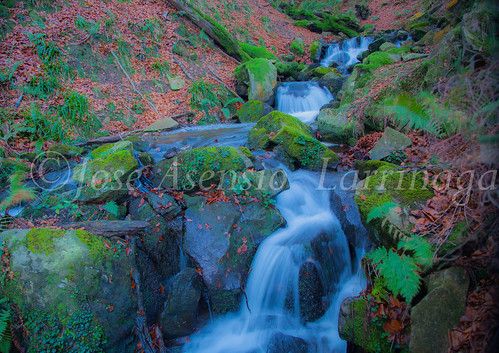Parque Natural de Gorbeia   #DePaseoConLarri #Flickr      -2753
