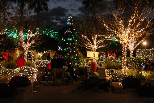 Holiday lights florida botanical gardens in largo fl - Largo botanical gardens christmas lights ...