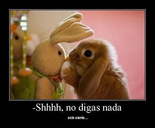 Imagenes De Animales Tiernos Con Frases De Amor 2 El Kamarada Soto