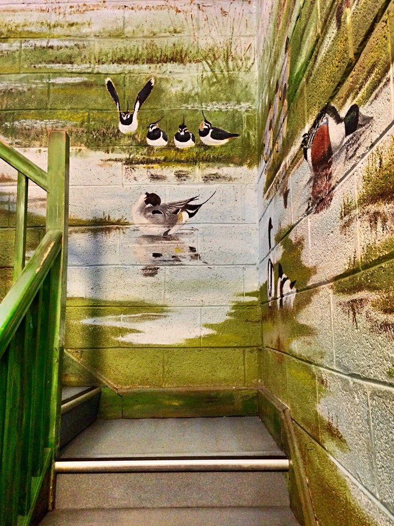 Wildfowl wall art | (295/366) This is part of the staircase … | Flickr