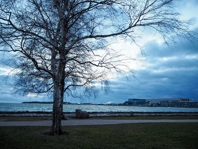winter walk, helsinki, finland, suomi, nature, luonto, winter, talvi, meri, sea, sininnen, blue, moment, hetki, valokuvata, photography, visit helsinki, visit finland, kaivopuisto, eira, jätkäsaari, winter walk, talvi kävely, marraskuu, november, city, kaupunki, seafront, meren ranta,