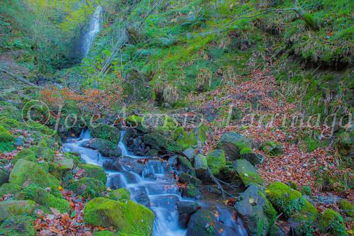 Parque Natural de Gorbeia #DePaseoConLarri #Flickr      -2815
