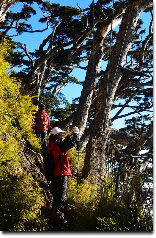 北大武山登山步道岩石斷崖區