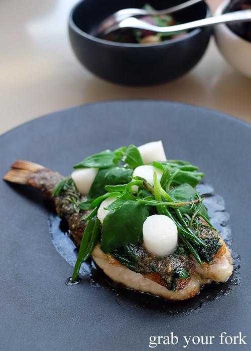 Roasted John Dory on the bone at Bennelong Restaurant Sydney