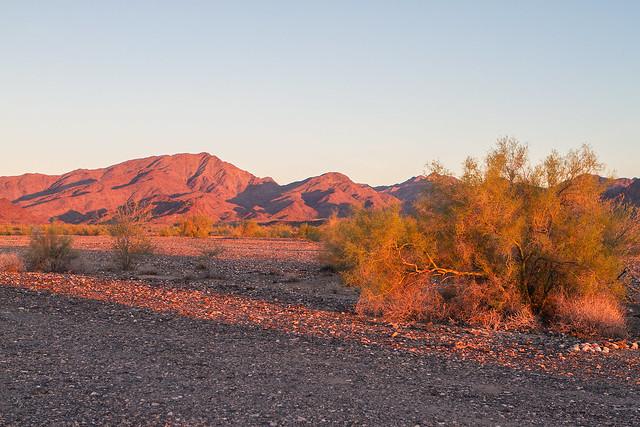Sunset-4-7D1-112216
