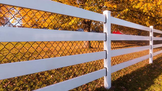 Fall Fence Line
