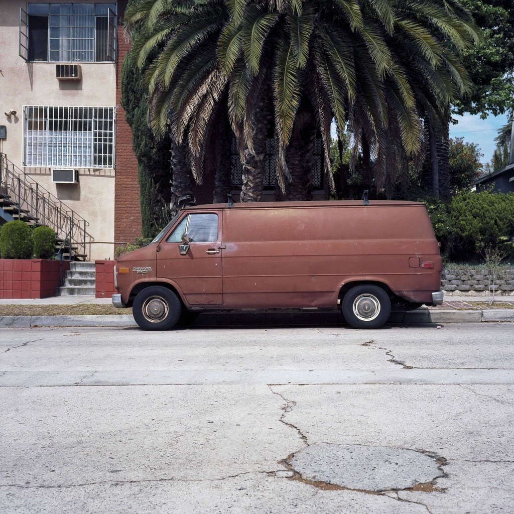 Brown van and palm | by ADMurr