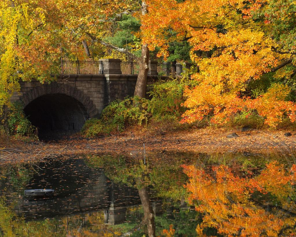 Service Road Bridge over Twin Lakes, New York Botanical Ga… | Flickr