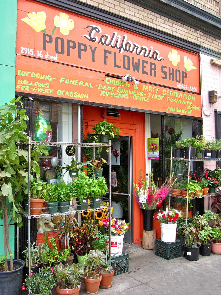 California Poppy Flower Shop San Francisco Ca Front Of T Flickr