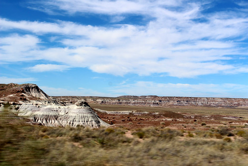 PetrifiedForest-11