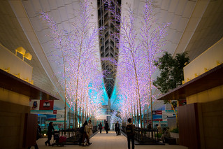 EOS M2  in Haneda | by 246-You