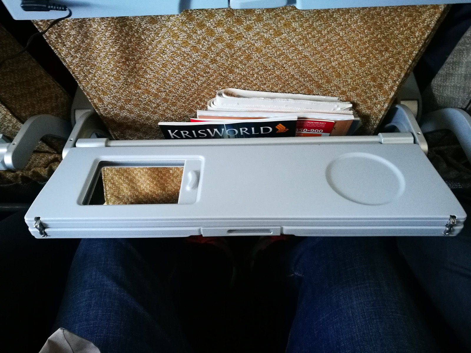 Tray table with mirror