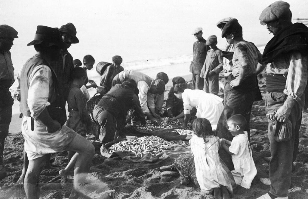 Récolte de la pêche sur la plage de Barceloneta à Barcelone.