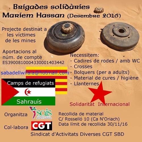 Brigades Solidàries Maríem Hassan