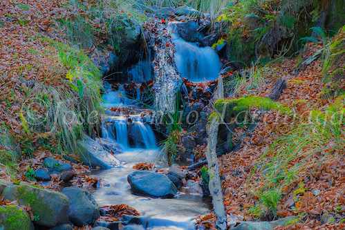 Parque Natural de Gorbeia #DePaseoConLarri #Flickr      -2831