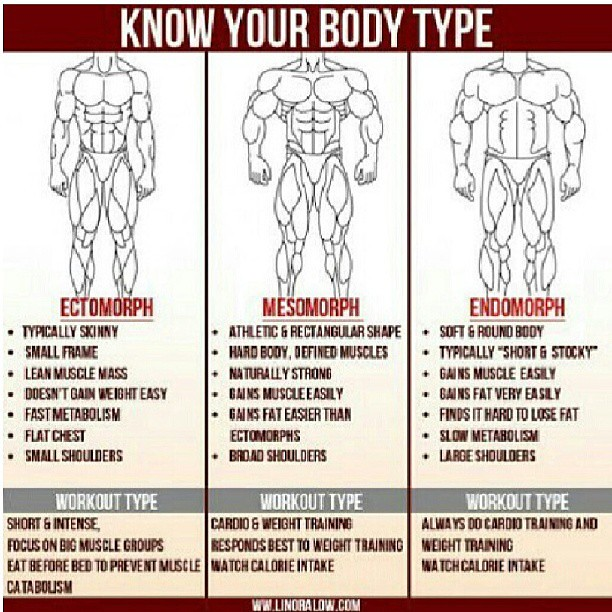 Know your body type! #fitness #workout #gym #swole #huge #… | Flickr