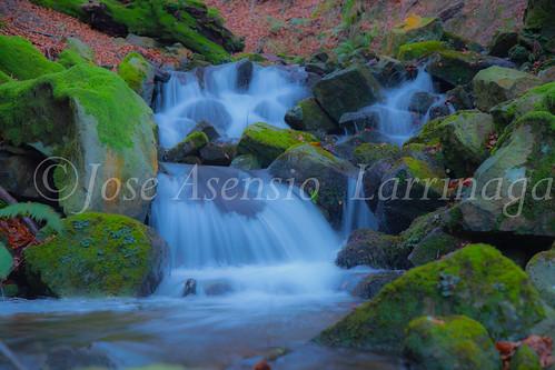 Parque Natural de Gorbeia   #DePaseoConLarri #Flickr      -2756