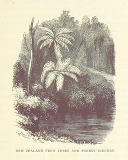 Image taken from page 321 of 'Te Ika a Maui, or, New Zealand and its Inhabitants ... Second edition, etc' | by The British Library