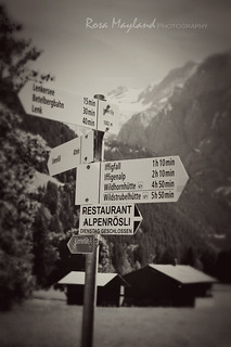 Every Road leads To A Restaurant - Follow The Sign | by Rosa's Yummy Yums