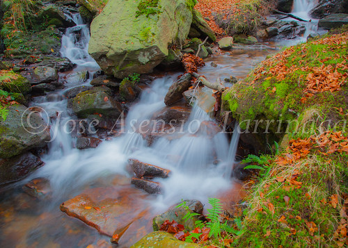 Parque natural de Gorbeia #DePaseoConLarri #Flickr      -2053