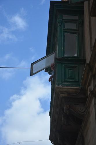 Aus einem Fenster schaut ein Malteser neugierig auf den Fotographen