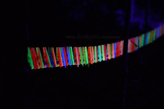 bruce light at arboretum-35web