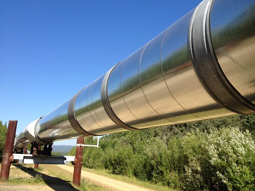 Trans-Alaska oil pipeline, near Fairbanks | by amerune
