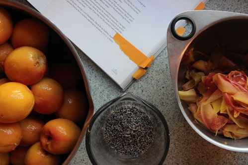 in which this becomes a canning blog..... | by Gypsy Forest