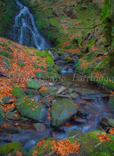 Parque natural de Gorbeia #DePaseoConLarri #Flickr      -2056