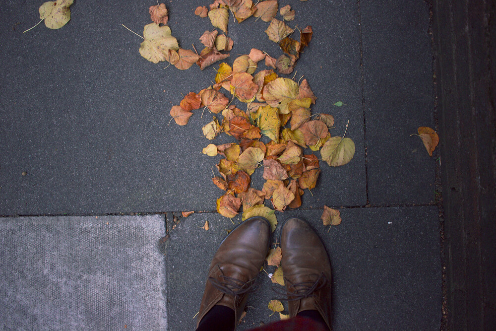 autumn leaves, shoes, autumn shoes, autumn view, long relationships, dating, learning about relationships