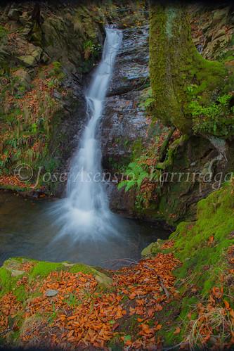 Parque natural de Gorbeia #DePaseoConLarri #Flickr      -2025