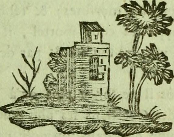 Image From Page 108 Of Jérusalem Délivrée Poëme Du Tass