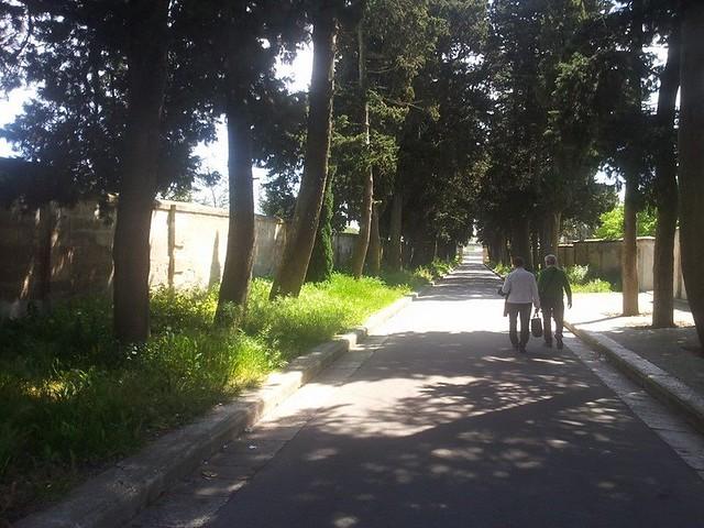 cimitero viale
