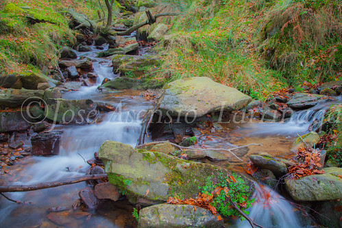 Parque natural de Gorbeia #DePaseoConLarri #Flickr      -2058