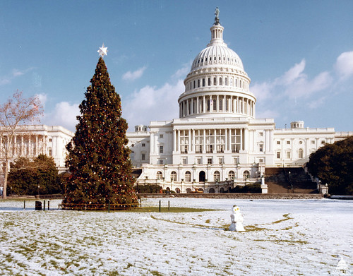 1981 U.S. Capitol Christmas Tree | by USCapitol
