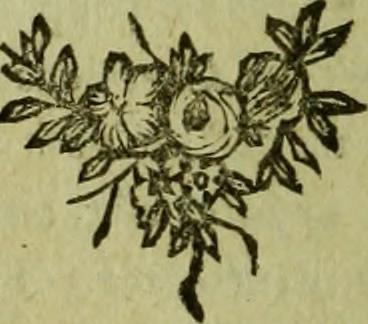 Image From Page 259 Of Jérusalem Délivrée Poëme Du Tass