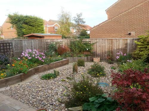 Garden 30th October 2016