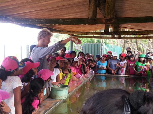 Tom explaning about turtles to local children | by KSTCP