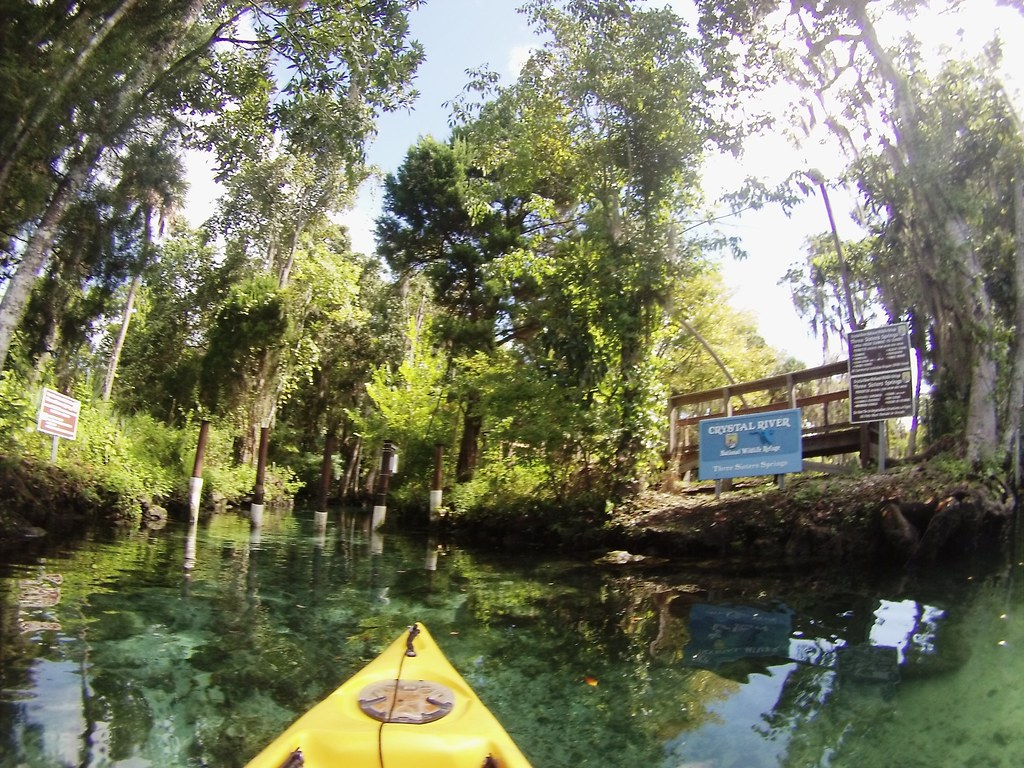 Kayaking Three Sisters Springs, Crystal River, Fla, Sept. 12, 2014