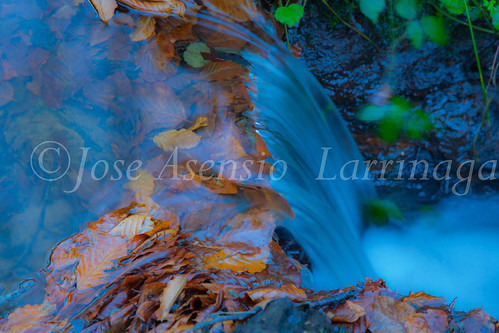 Parque Natural de Gorbeia #DePaseoConLarri #Flickr -2838