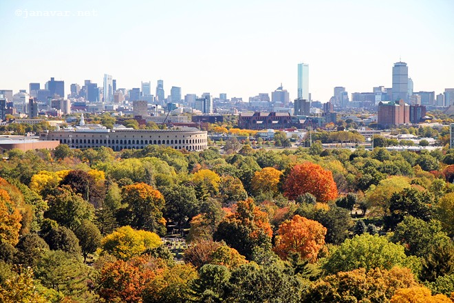 5 things to do in Boston in October